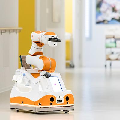Ostertag DeTeWe F&P Robotics Roboter Lio